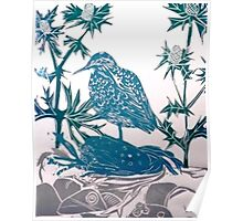 Sand Piper in Sea Holly Poster