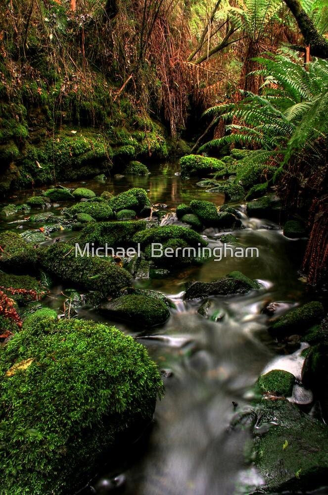 Tranquil by Michael  Bermingham