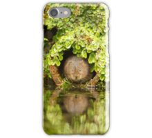 A vole in the wall iPhone Case/Skin
