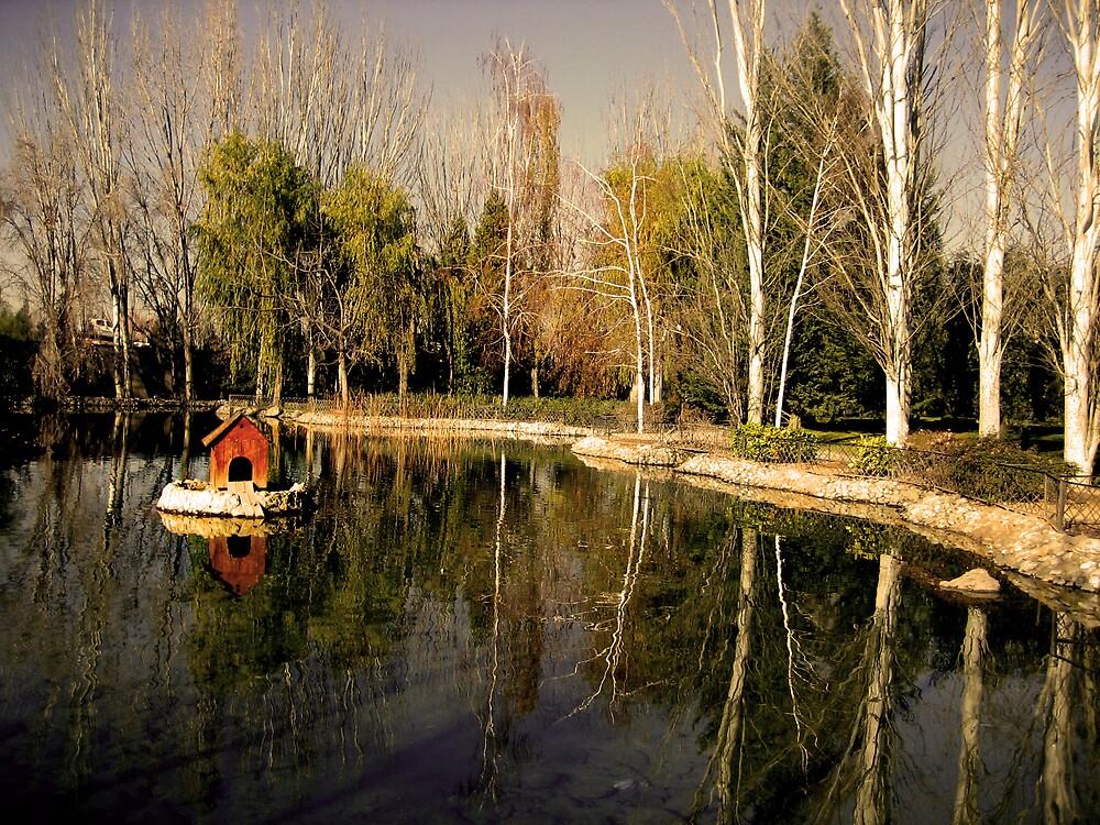 Lake  by Gayathri  Ramachandran