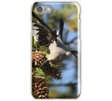 Clark's Nutcracker at Mammoth Hot Springs iPhone Case/Skin