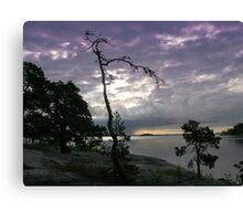 Rock island in the Baltic sea (SWEDEN) Canvas Print