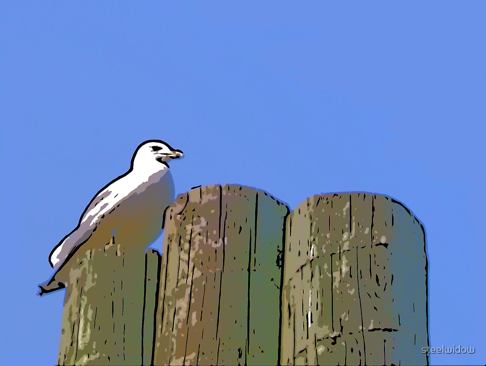 Comic Abstract Seagull by steelwidow