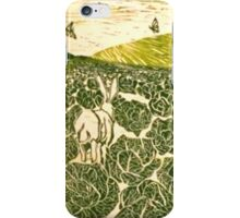 Cabbage Field Hare iPhone Case/Skin
