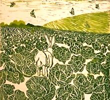 Cabbage Field Hare by BellaBees