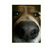Does my nose look big in this? Art Print