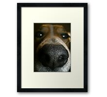 Does my nose look big in this? Framed Print