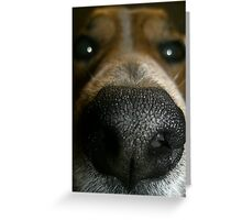 Does my nose look big in this? Greeting Card