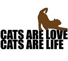 Cats are love, cats are life Photographic Print