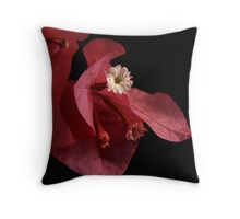 Paper Wings Throw Pillow