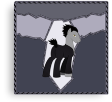 ROTG Pony Pitch Canvas Print