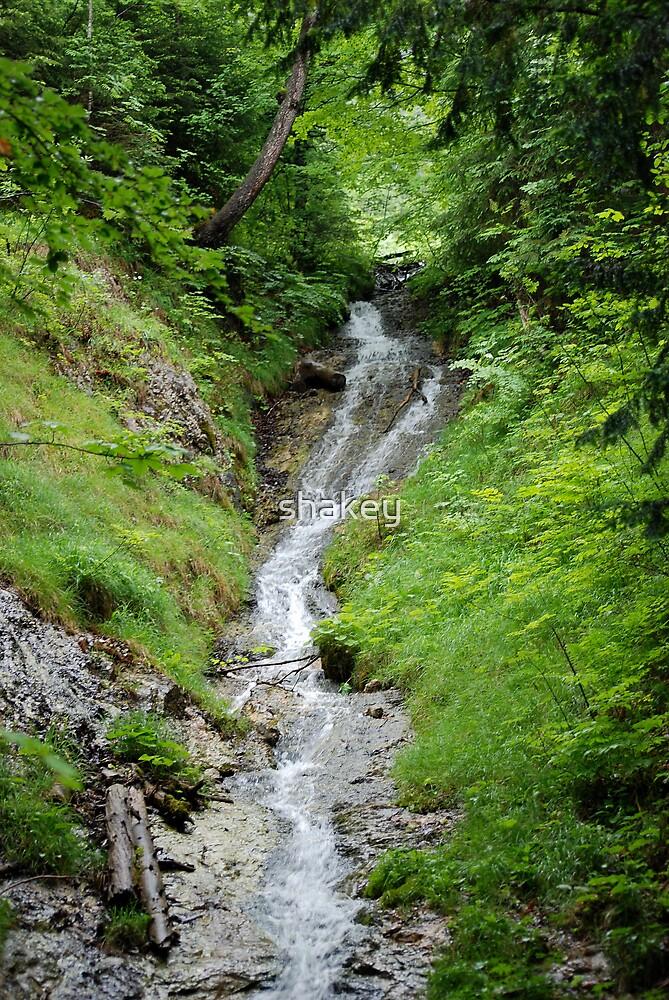 Mountain Stream by shakey
