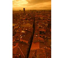 The roofs of Lucca Photographic Print