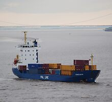 Container ship Humber Bridge by shakey