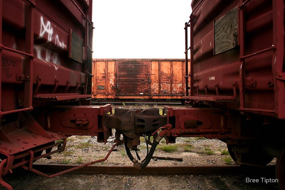 rusty train by Bree Tipton