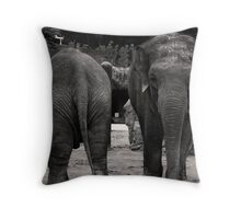 asre to face Throw Pillow