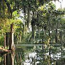 Charleston Moss by paula whatley
