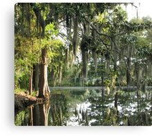 Charleston Moss Canvas Print