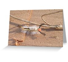 Insects Desert Greeting Card