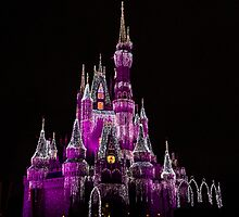 The Happiest Place on Earth by Adam Northam