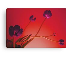 Stems & Stamens Canvas Print