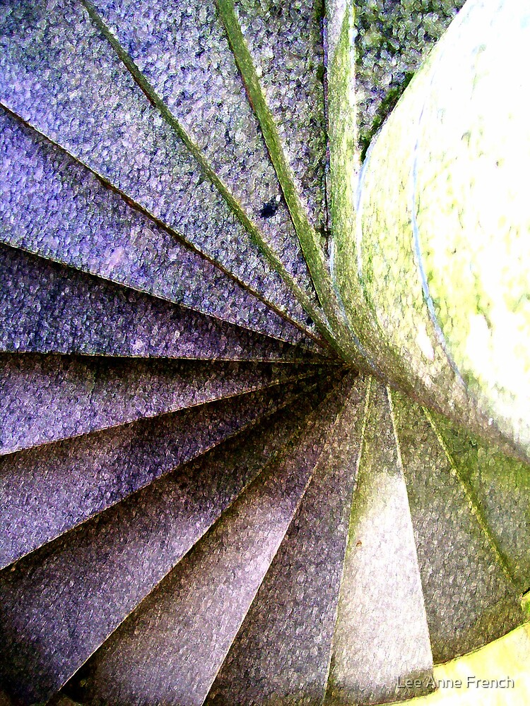Spiral Stairs by Lee Anne French