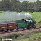 Steaming across the Australian landscape by Richard Shakenovsky