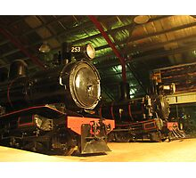 northen narrow gauge Photographic Print