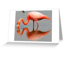 pink mirror image Greeting Card