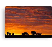 Glorious Grazing Canvas Print