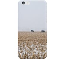 Cows in a Cornfield during Snowstorm iPhone Case/Skin