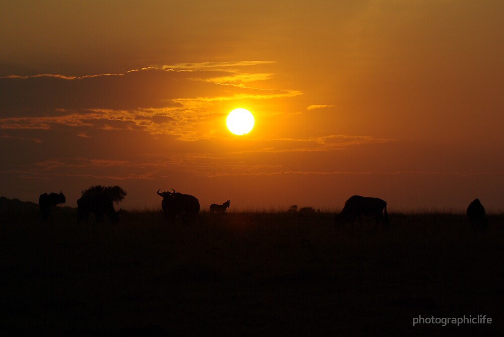 Sunset in Africa by photographiclife