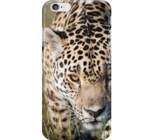 Prowling jaguar iPhone Case/Skin