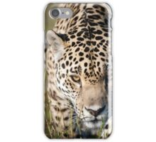 Prowling jaguar iPhone Case/Skin