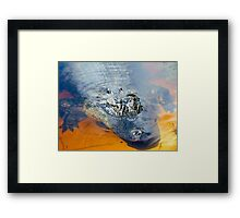 What Lurks In The Water Framed Print