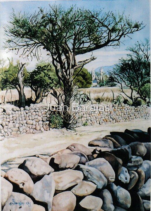 Bajo la sombra by Juan Barajas