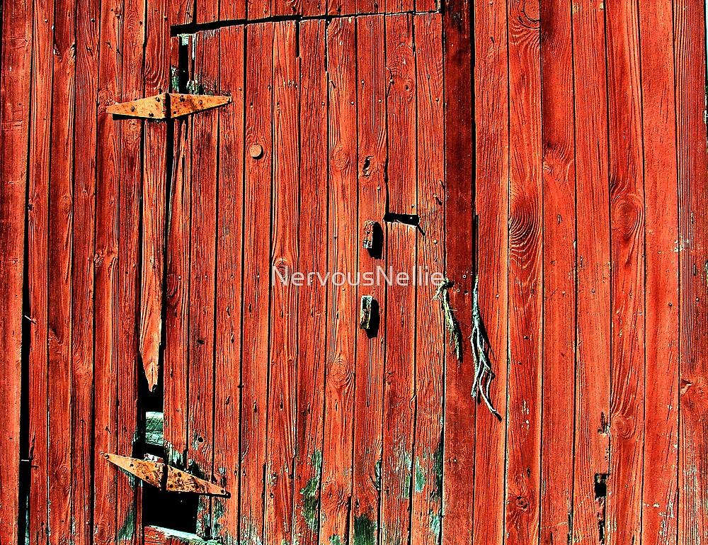 Barn Door by NervousNellie