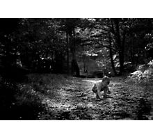 If you go down to the woods today... Photographic Print