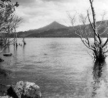 Loch Rannoch and Schiehallion, black and white by Tim Haynes