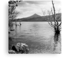 Loch Rannoch and Schiehallion, black and white Canvas Print