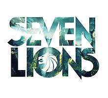 Seven Lions Photographic Print