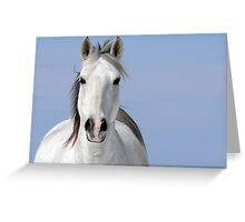 Pale Rider Greeting Card