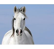 Pale Rider Photographic Print