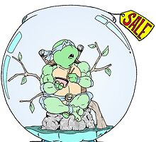 Turtle for Sale by Skree