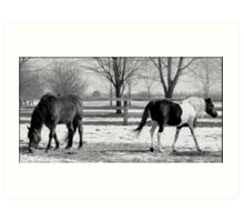 Horses In Winter Art Print
