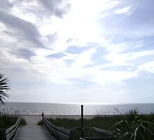 CASEY KEY BEACH by jsnj528