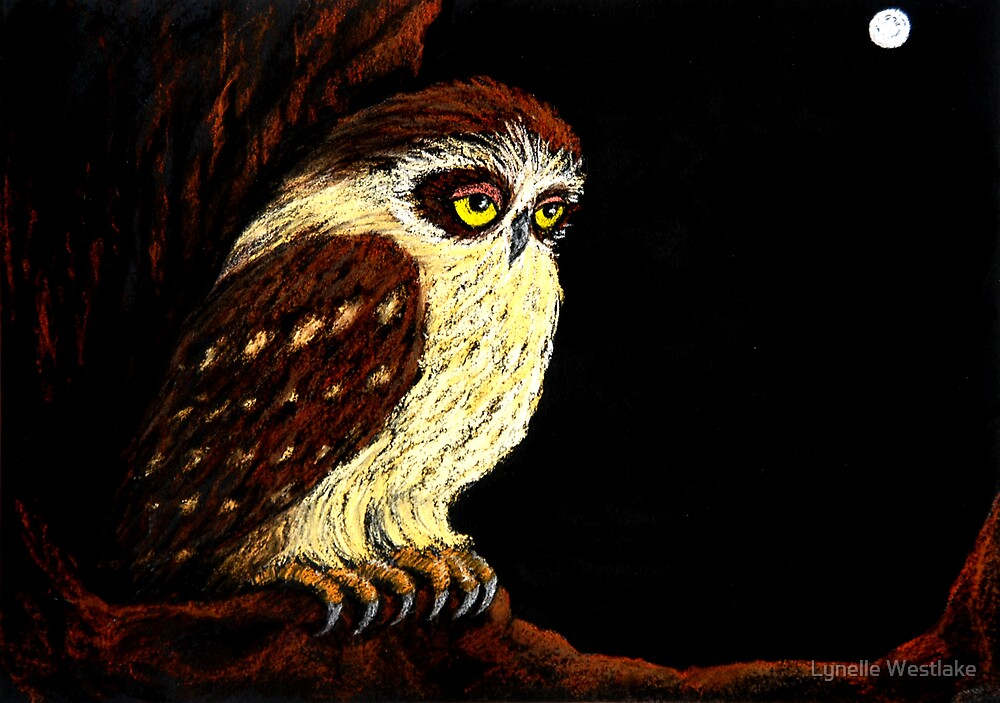 Ornella the Owl by Moonlight by Lynelle Westlake