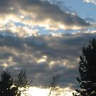 Morning Clouds  by coleen gudbranson