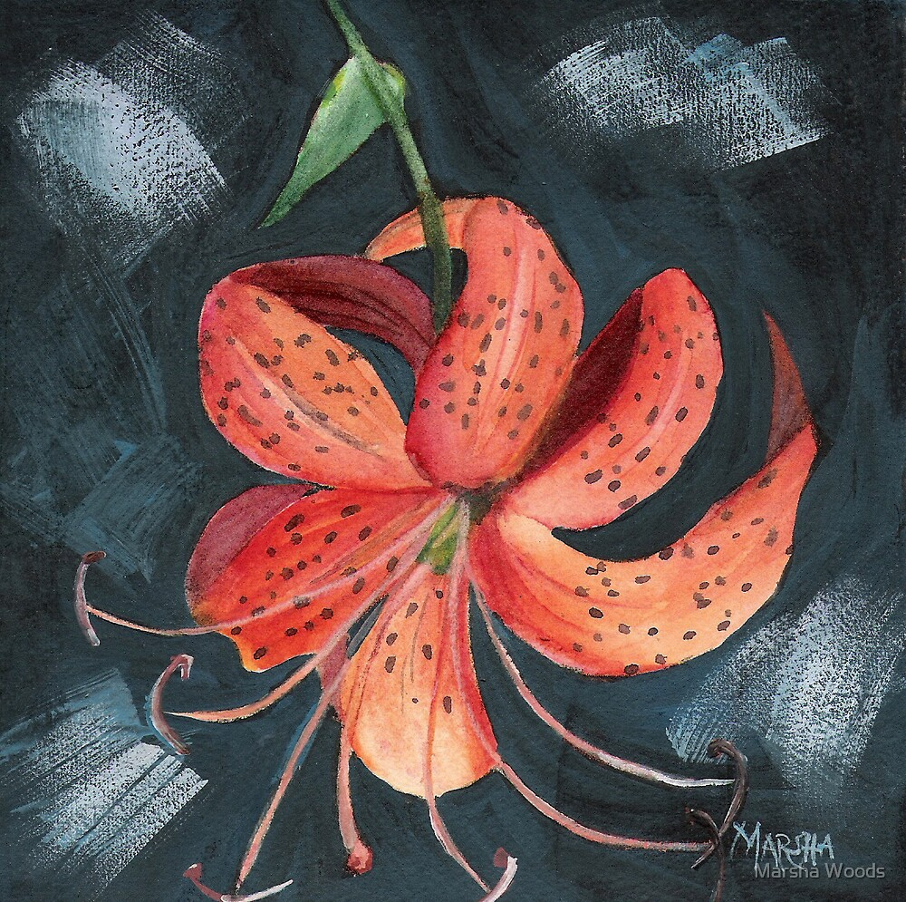 Bold Lily by Marsha Woods