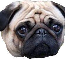 Pug by emerbelle